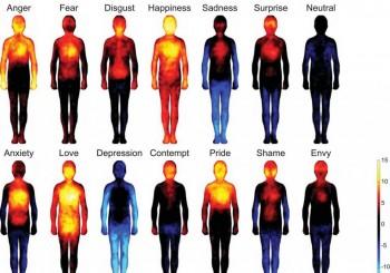 emotieschrijvenYoekeNagel