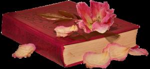 Boek vol kennis